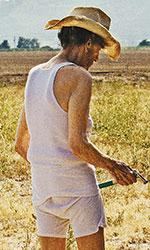 In foto Harry Dean Stanton (95 anni) Dall'articolo: Lucky, un omaggio appassionato all'America del vecchio Far West..