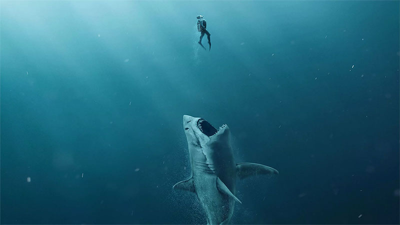Lo squalo non muore mai: 140.000€ per Shark al 12° giorno di programmazione