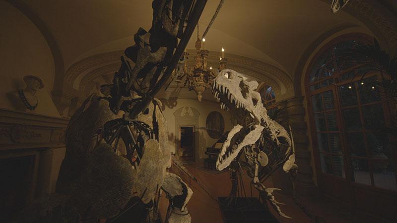 Dinosaurs, un minuzioso documentario che racconta la passione per l'era preistorica
