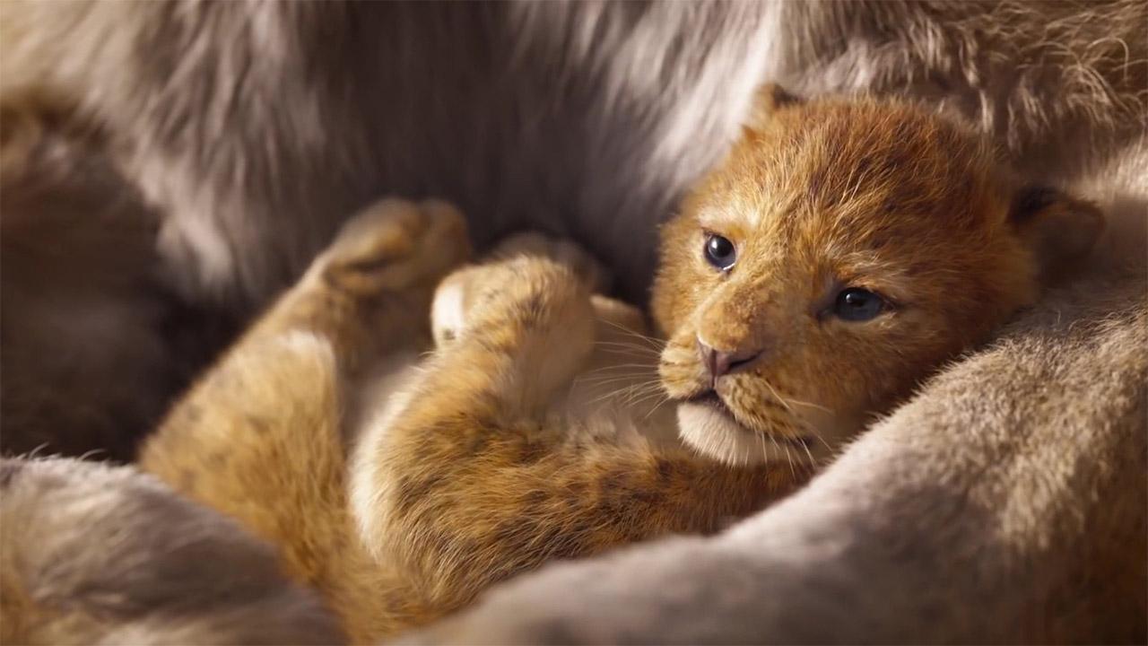 -  Dall'articolo: Il Re Leone, il ritorno al cinema di una delle storie più amate di sempre.