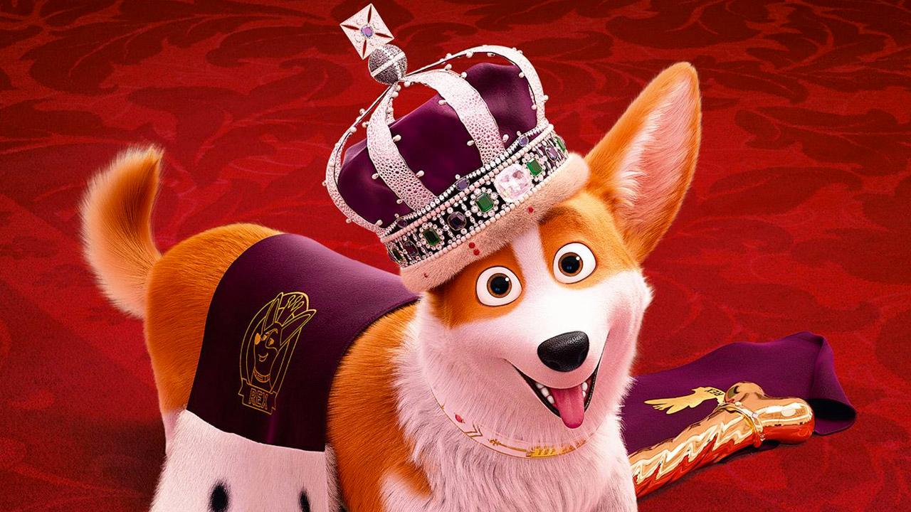 -  Dall'articolo: Rex - Un cucciolo a Palazzo, un film per ragazzi semplice e costruttivo.
