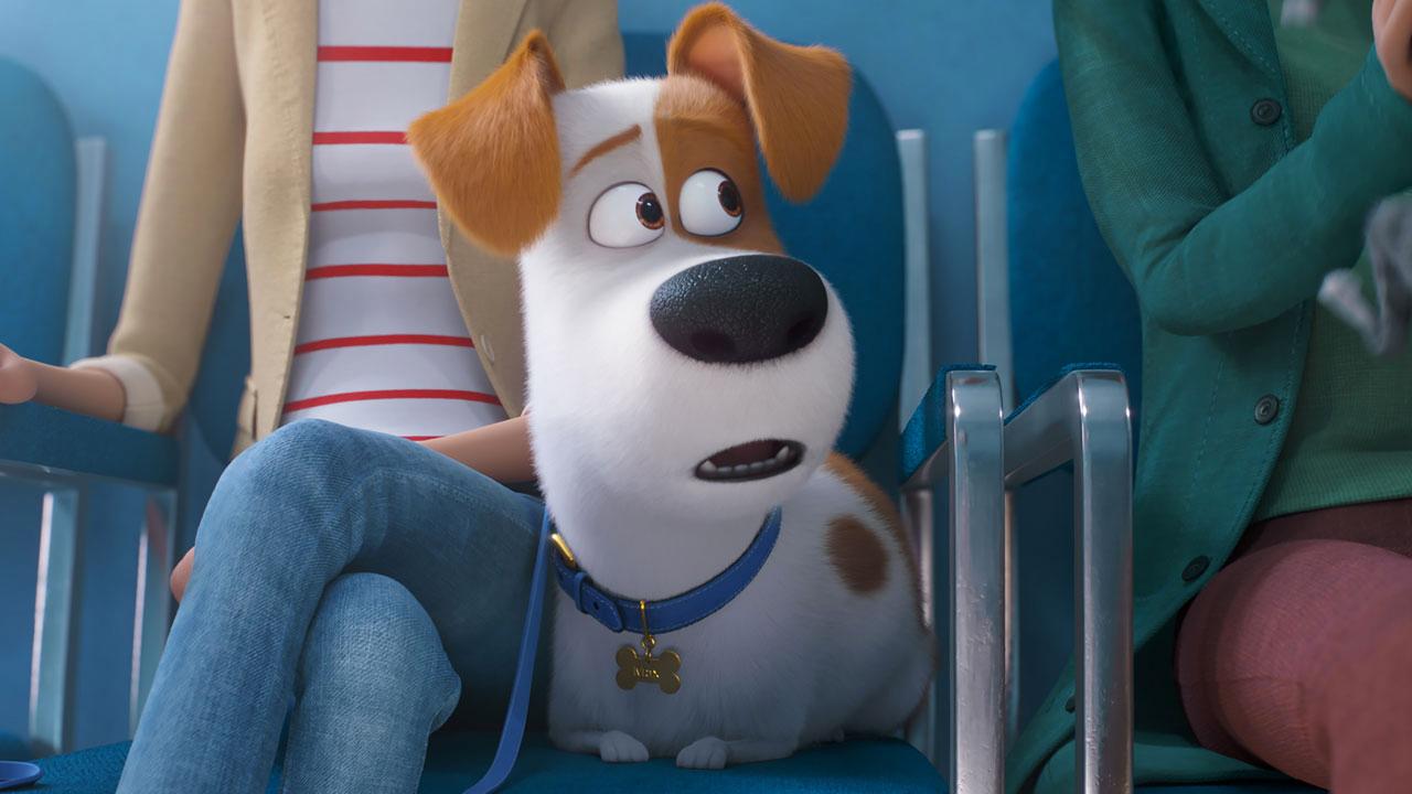 -  Dall'articolo: Pets 2 - Vita da animali: citazioni, divertimento e un finale all'altezza.
