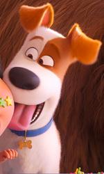 -  Dall'articolo: Pets 2 conquista il primo posto al Box Office con 315mila euro.