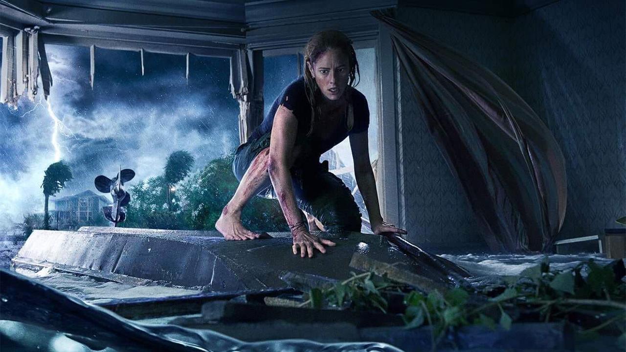-  Dall'articolo: Crawl, gli alligatori protagonisti di un horror dark, claustrofobico e ossessivo.