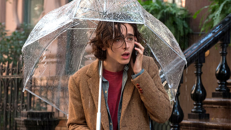 In foto Timothée Chalamet (25 anni) Dall'articolo: Un Giorno di Pioggia a New York, il trailer italiano del film [HD].