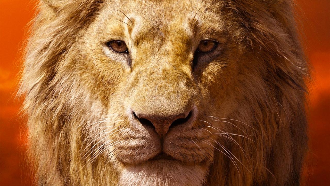 -  Dall'articolo: Il Re Leone, incassi da capogiro. Può fare meglio di Checco Zalone?.