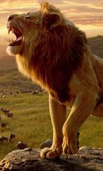 -  Dall'articolo: Il Re Leone sotto il milione di euro per la prima volta dall'uscita.