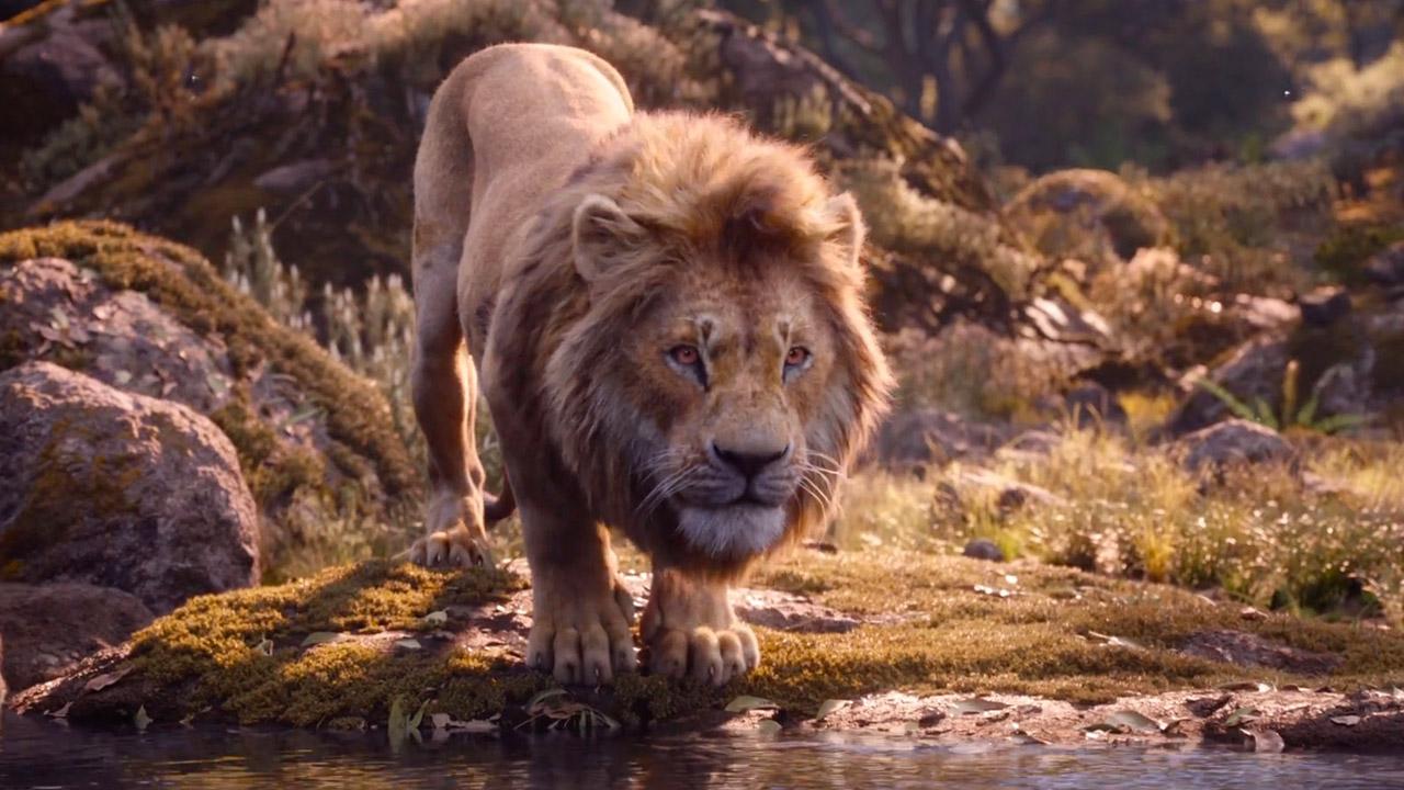 -  Dall'articolo: Il Re Leone non rallenta. I 40 milioni al box office sono ora possibili.