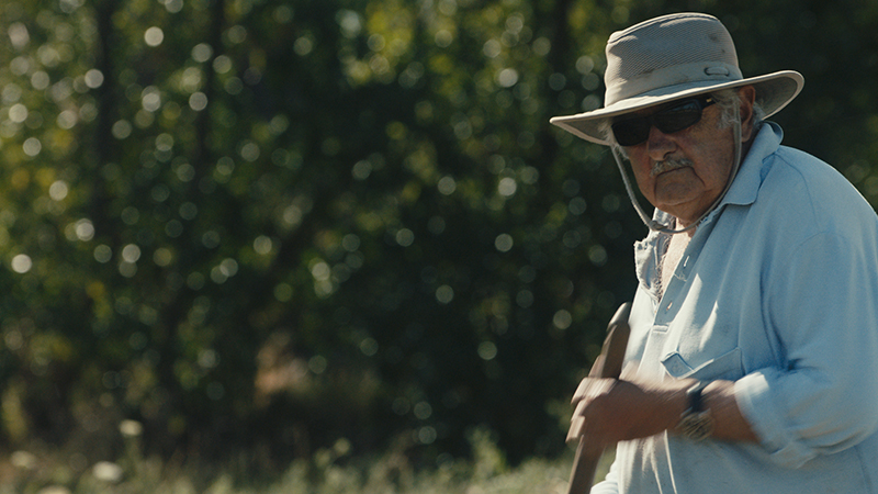 In foto una scena del film Pepe Mujica - Una vita suprema. -  Dall'articolo: Pepe Mujica: «il problema non sono i soldi, il problema è nella testa».