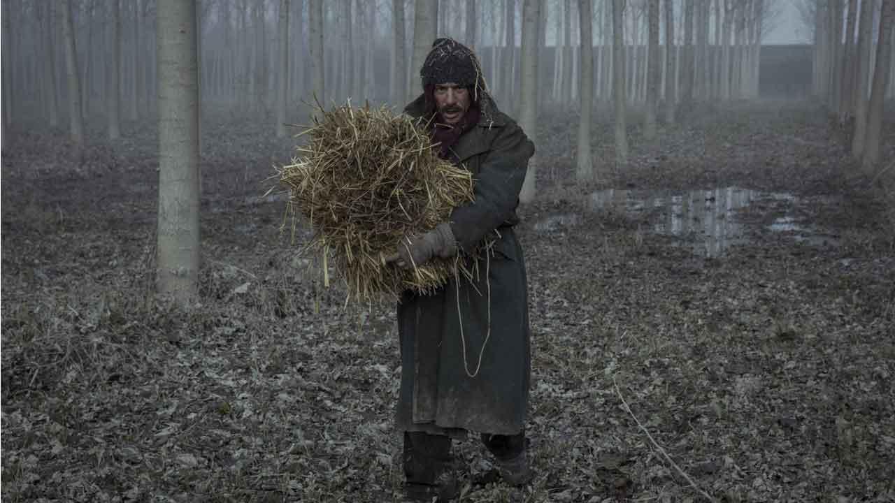 In foto Elio Germano (41 anni) Dall'articolo: Ligabue come Van Gogh. Due vite parallele legate da un unico dolore.