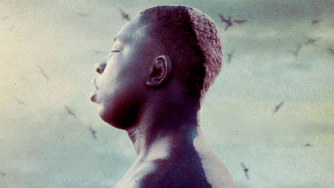 Libero cinema in Libera terra 2020, tornano gli appuntamenti su MYmovies