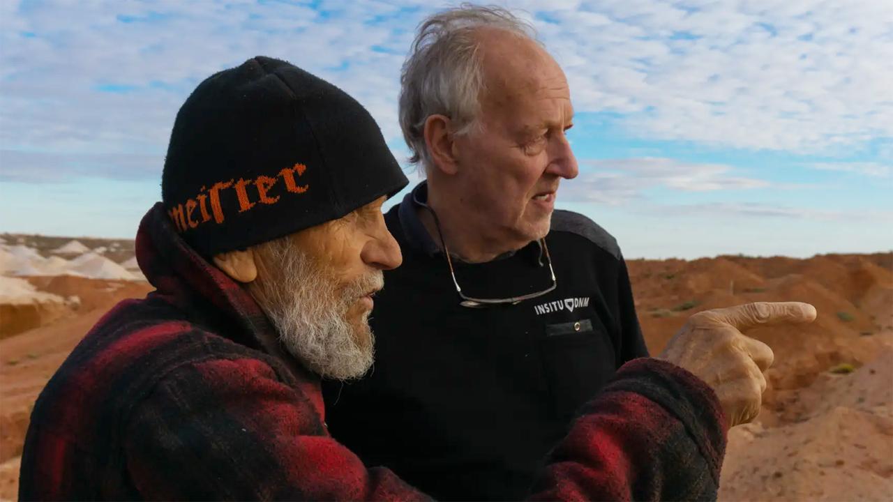 -  Dall'articolo: Nomad - In cammino con Bruce Chatwin, il trailer italiano del film.