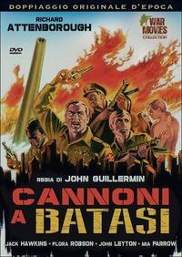 Trailer Cannoni a Batasi