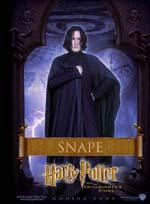 Poster Harry Potter e la pietra filosofale  n. 11