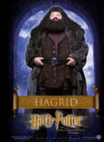 Poster Harry Potter e la pietra filosofale  n. 6