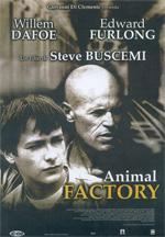 Poster Animal Factory  n. 0