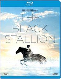 Trailer Black Stallion