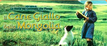 Il cane giallo della Mongolia