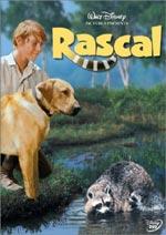 Locandina Rascal, l'orsetto lavatore