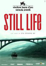 Poster Still Life  n. 0