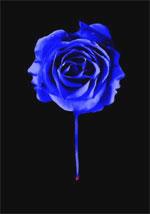 Poster Il nome del mio assassino  n. 5