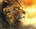 Poster Le cronache di Narnia - Il Principe Caspian  n. 20