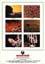 Poster Woodstock - Tre giorni di pace, amore e musica