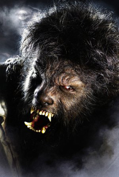 Poster Wolfman