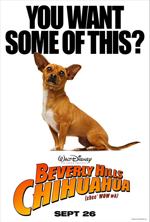 Poster Beverly Hills Chihuahua  n. 2