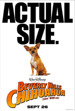 Poster Beverly Hills Chihuahua  n. 3