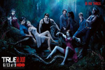 Poster True Blood  n. 41