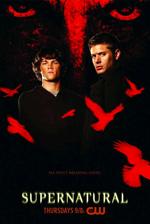 Poster Supernatural  n. 4