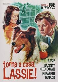 Locandina Torna a casa, Lassie!