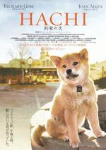 Poster Hachiko - Il tuo migliore amico  n. 2