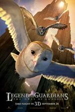 Poster Il Regno di Ga' Hoole - La leggenda dei guardiani  n. 10