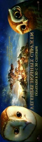 Poster Il Regno di Ga' Hoole - La leggenda dei guardiani  n. 12