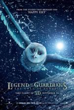 Poster Il Regno di Ga' Hoole - La leggenda dei guardiani  n. 15