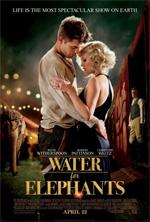 Poster Come l'acqua per gli elefanti  n. 10