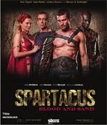 Poster Spartacus: Sangue e sabbia  n. 12