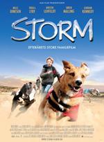 Trailer Storm