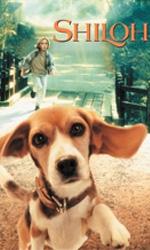 Locandina Shiloh, un cucciolo per amico