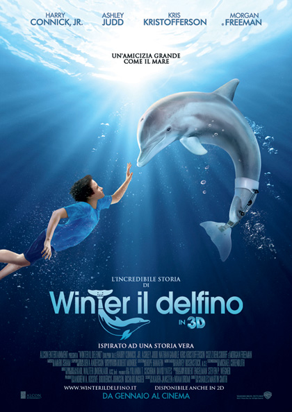 l 39 incredibile storia di winter il delfino in 3d 2011. Black Bedroom Furniture Sets. Home Design Ideas