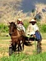 Locandina Diol Kadd. Vita, diari e riprese in un villaggio del Senegal