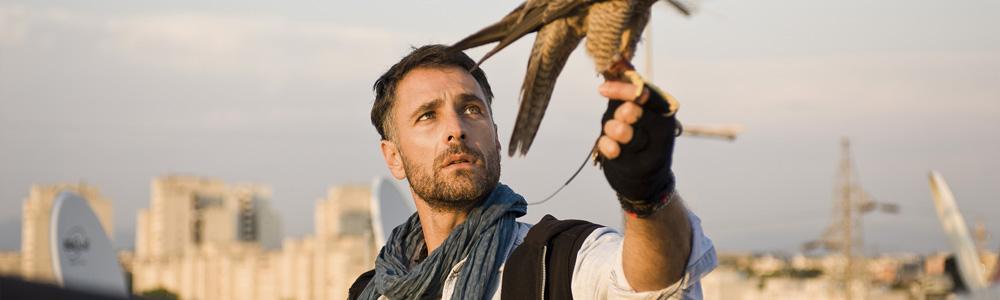 Ultimo - L'occhio del falco