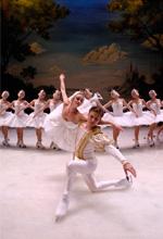 Dal Teatro Carlo Felice di Genova: Il lago dei cigni
