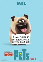Poster Pets - Vita da animali  n. 10