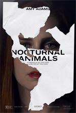 Poster Animali notturni  n. 4