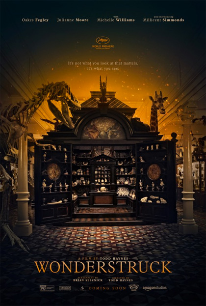 Poster La stanza delle meraviglie