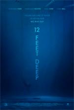 Trailer 12 Feet Deep