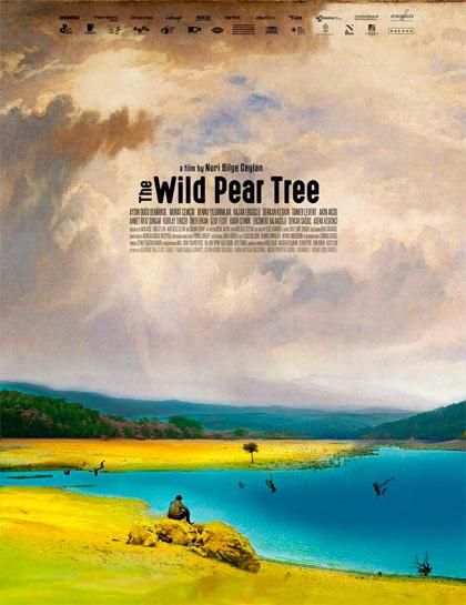 Poster L'albero dei frutti selvatici